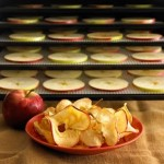 B004Z915M4_Excalibur_3900B_9-Tray_Deluxe_Dehydrator_apples._V398057719_.jpg